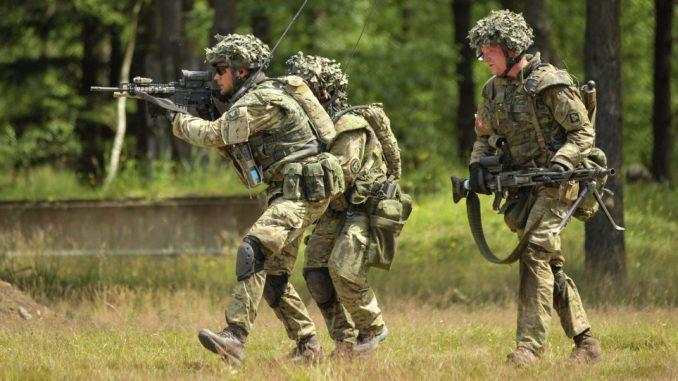 عناصر من الجيش الدنماركي