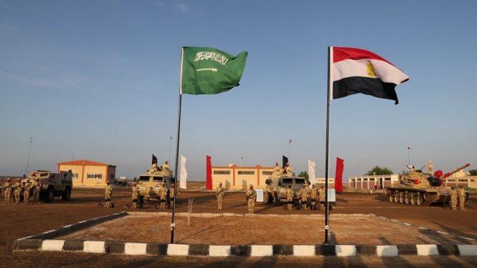 التدريب المصري- السعودي المشترك تبوك-4 (صورة أرشيفية)